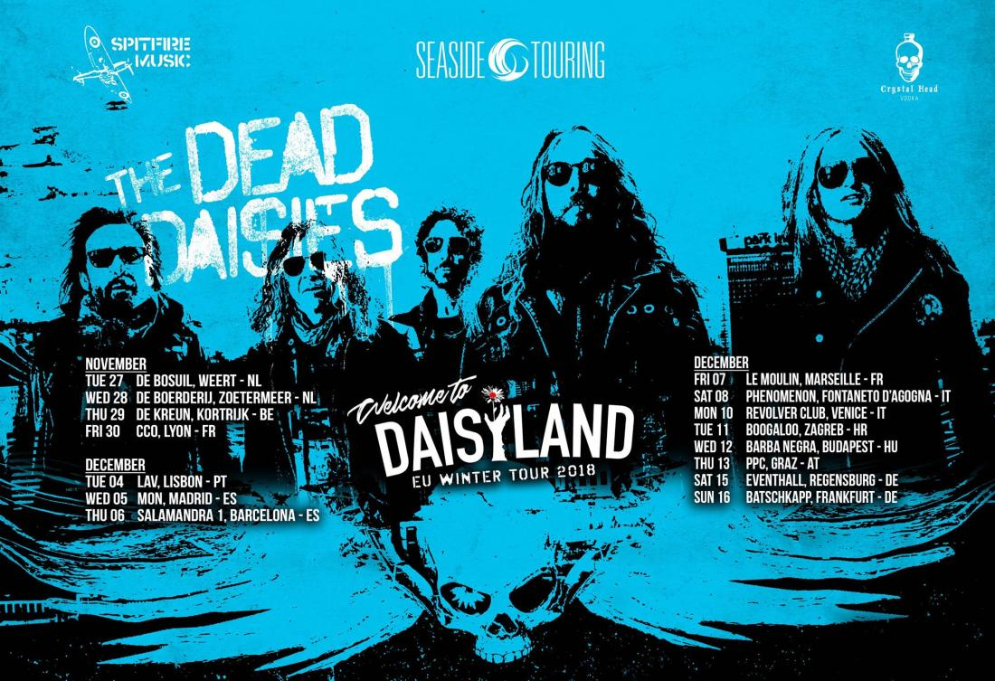 DeadDaisies1